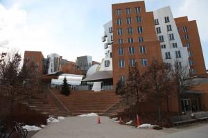 세계적인 건축가 프랭크 게리가 디자인한 MIT 스타타센터. 촘스키교수 연구실은 이 건물 8층에 자리하고 있다.